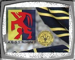 AGGS Novate 1