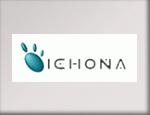 Tra le marche trattate da PR Informatica: Ichona