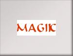Tra le marche trattate da PR Informatica: Magik