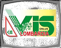VIS Lombardia